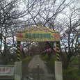 2006年3月17日 権現堂
