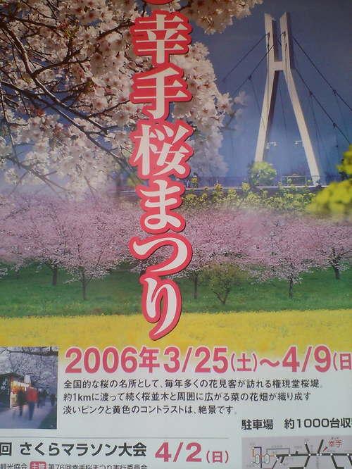 2006年 桜祭りポスター