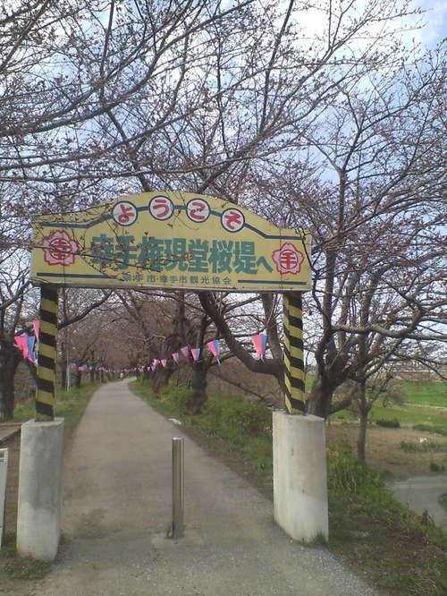 2006年3月24日 権現堂