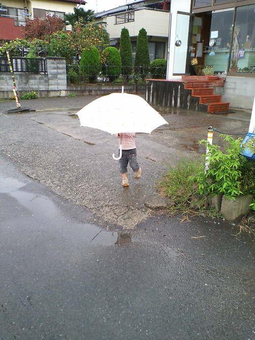 今日は雨の日