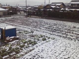 また雪が…